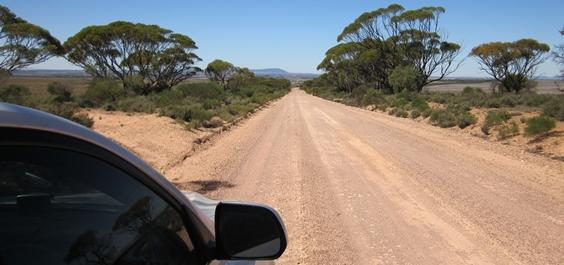 The Road Ahead Fertility Farming